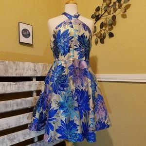 Belle Badgley Mischka Size 8 dress with POCKETS